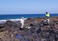Vuelve el misterioso fenómeno del piche a las costas de  la Playa de Arinaga, Agüimes