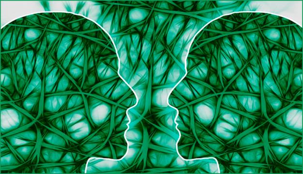 neuronas espejos