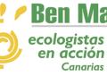 Ecologistas en Acción presenta un manual de lucha contra el arbolicidio