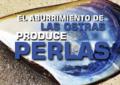 EL ABURRIMIENTO DE LAS OSTRAS PRODUCE PERLAS
