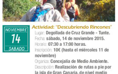 El Ayuntamiento de Ingenio te anima a descubrir rincones de nuestra isla